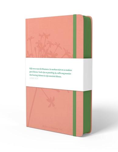 BGT Compact roze (Paperback)