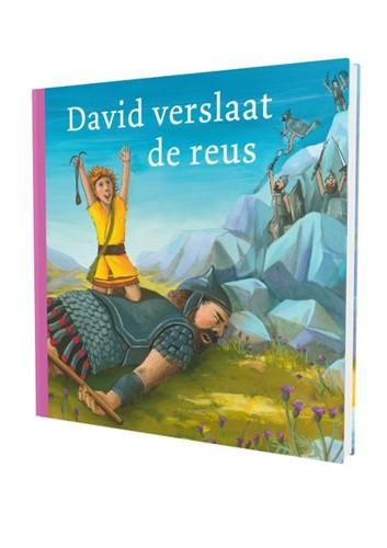 David verslaat de reus (Hardcover)