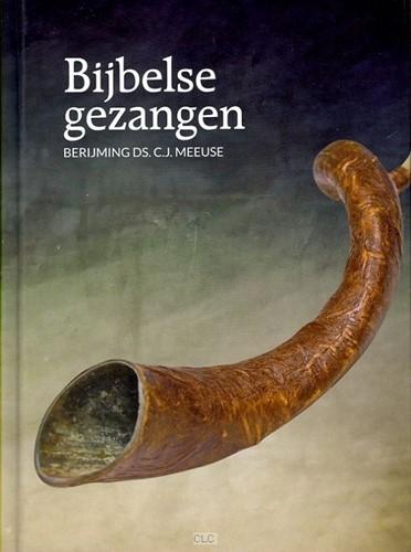 Bijbelse gezangen (Hardcover)