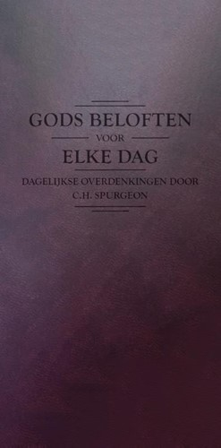 Gods beloften voor elke dag (Paperback)