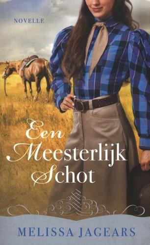 Een meesterlijk schot (Paperback)