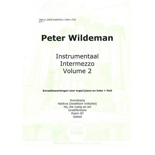 Instrumentaal intermezzo 2 (Paperback)
