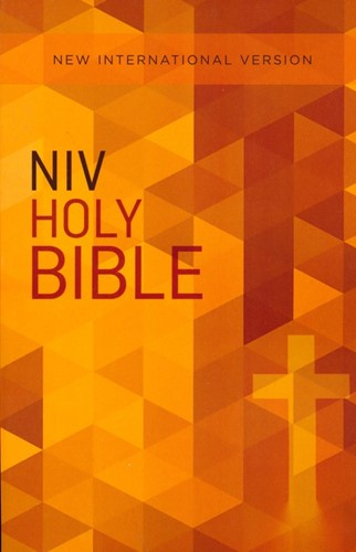 NIV outreach bible (Paperback)