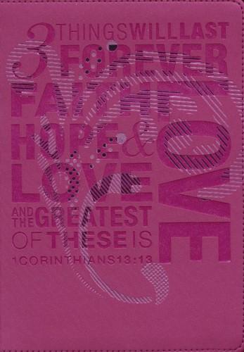 NLT teen slimline bible 1 cor 13 (Boek)