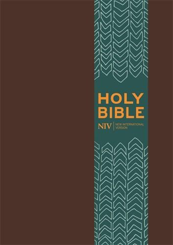 NIV pocket bible with clasp (Boek)