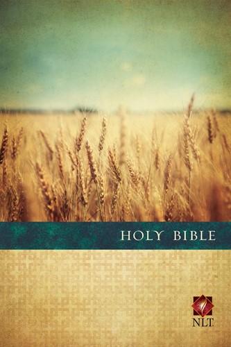 NLT slimline bible large print colour (Boek)