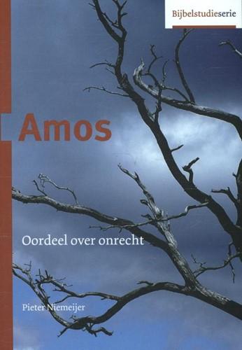 Amos (Paperback)