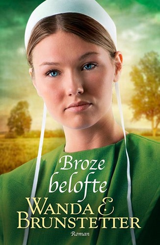 Broze belofte (Paperback)