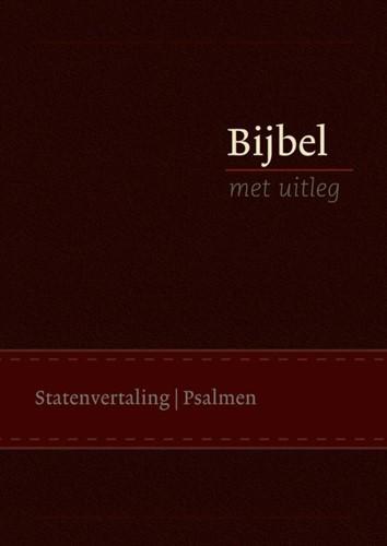 Bijbel met uitleg - groot, kerk (Leder/Luxe gebonden)