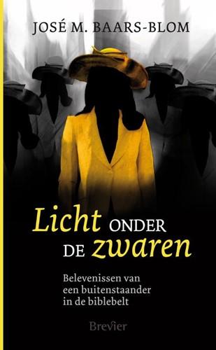 Licht onder de zwaren (Paperback)