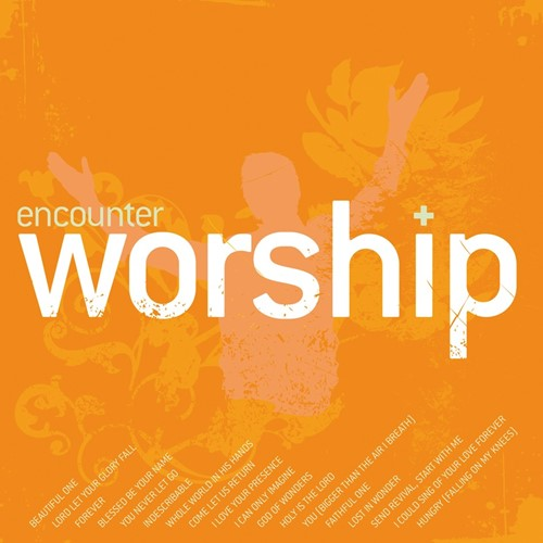 Encounter worship vol. 2 (CD)