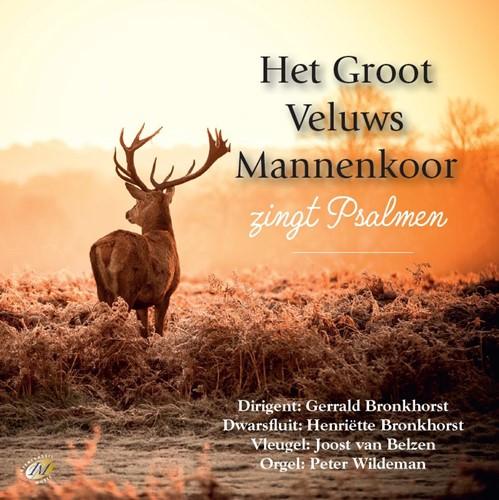 Zingt Psalmen (CD)