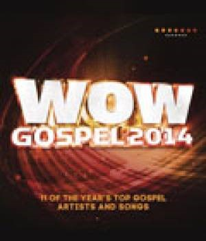 Wow Gospel 2014 (DVD)
