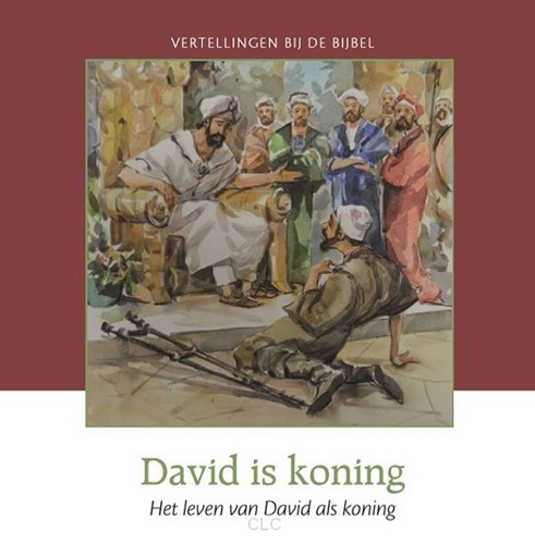 David is koning (Hardcover)