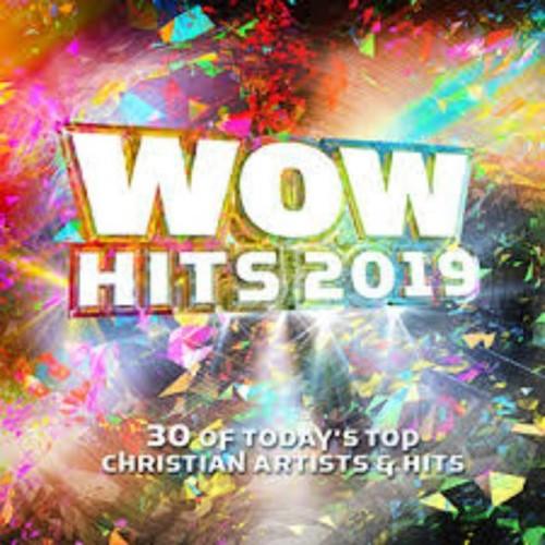 WOW Hits 2019(2CD) (CD)