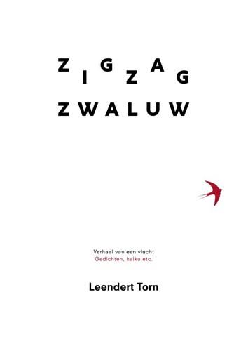Zigzag zwaluw (Paperback)