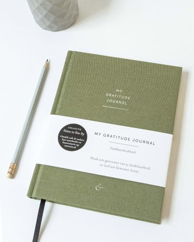 My Gratitude Journal (Hardcover)