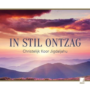 In stil ontzag (CD)