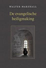 Evangelische heiligmaking (Boek)