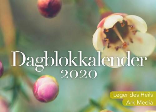 Dag in dag uit 2020 dagblokkalender (Kalender)