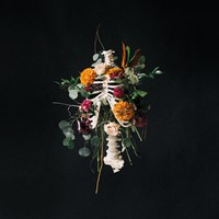 Graves Into Gardens (CD)