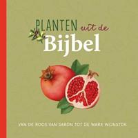 Planten uit de Bijbel (Hardcover)