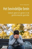 Het bevindelijke brein (Paperback)