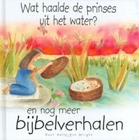 Wat haalde de prinses uit het water?