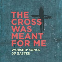 The Cross Was Meant for me (CD)