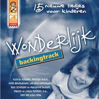 Wonderlijk - Backingtrack