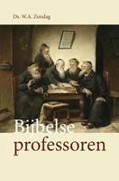 Bijbelse professoren (Paperback)