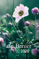 Banier Dagboekkalender 2020 (Grote letter)