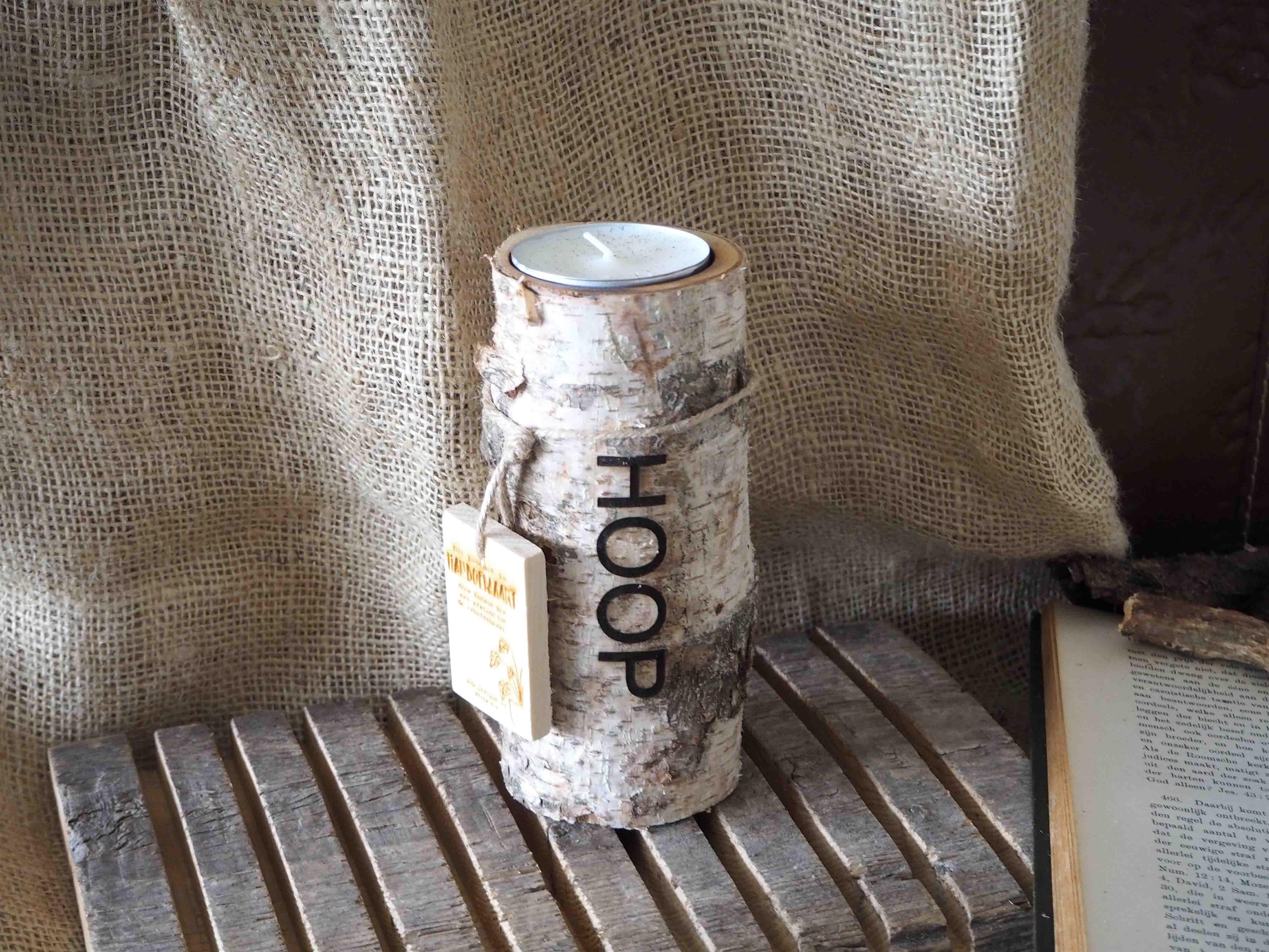 Boomstam Berk M, Hoop