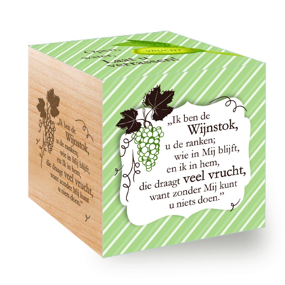 Groei Kubus hout: Ik ben de Wijnstok, u de ranken.......