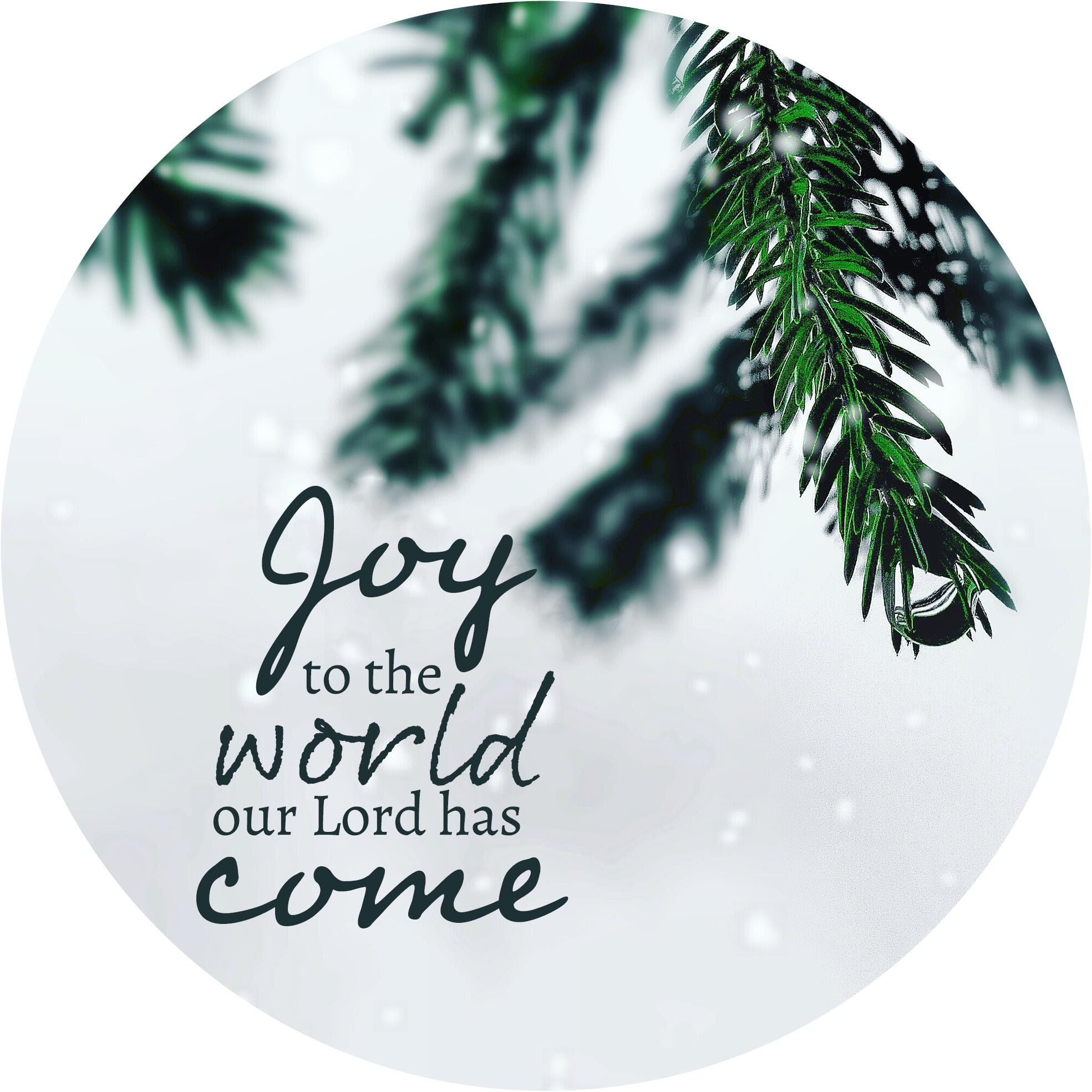Muurcirkel Kerst Wit 25 cm - Joy to the world