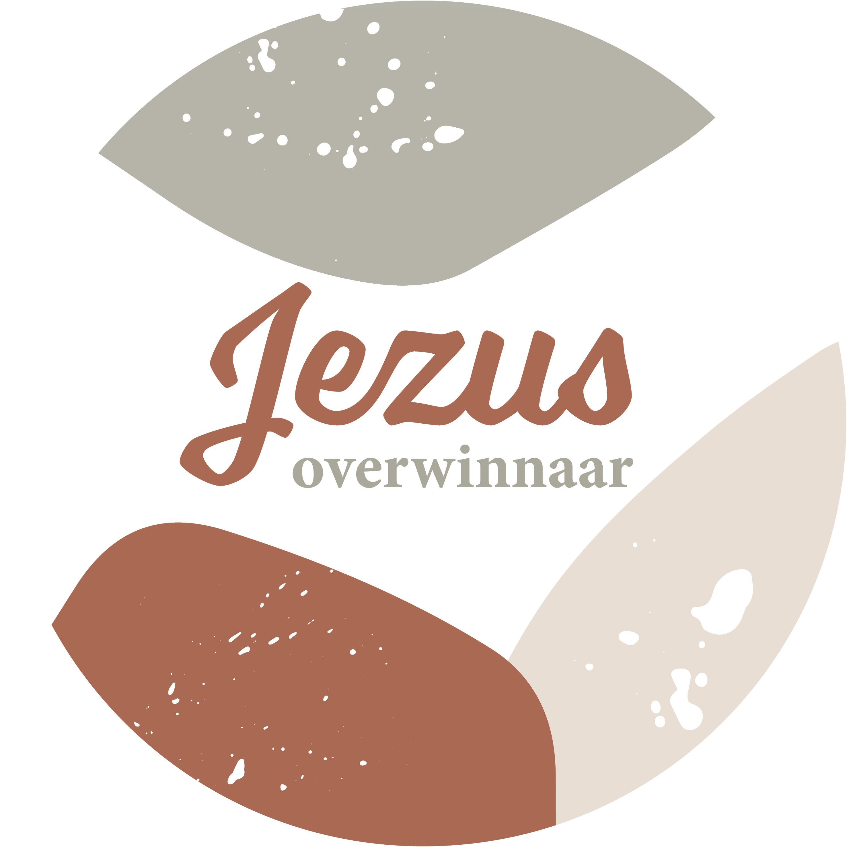 Muurcirkel Multicolor 25 cm - Jezus Overwinnaar